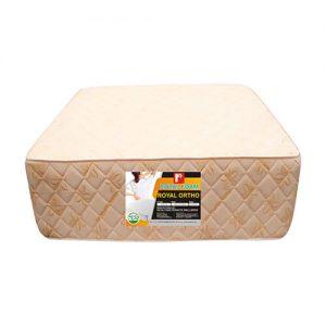 Royal Ortho foam